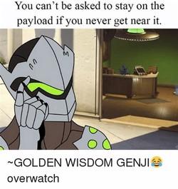 droll genji memes