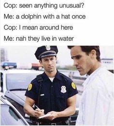 droll quality memes