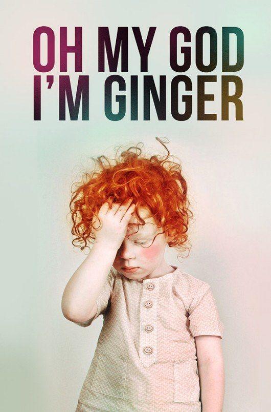 entertaining ginger meme