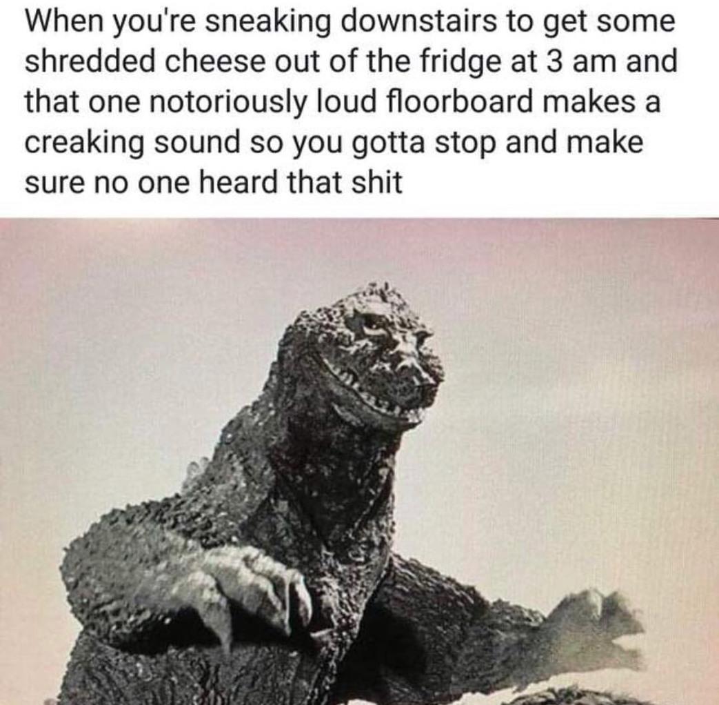 entertaining godzilla meme