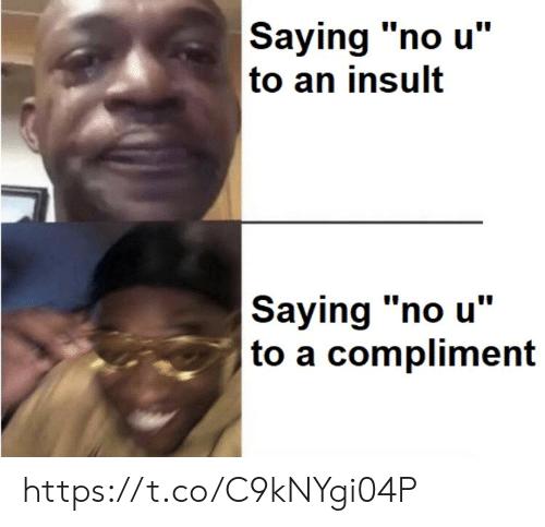 entertaining insult meme