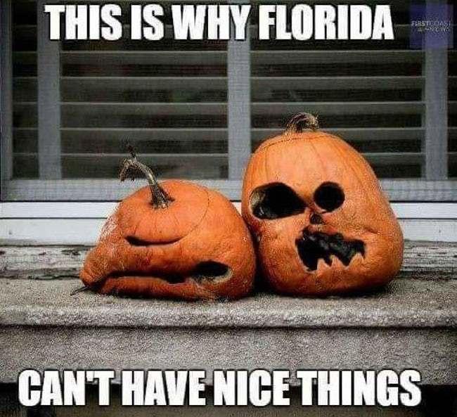 funny florida memes