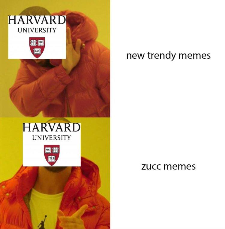 funny harvard memes