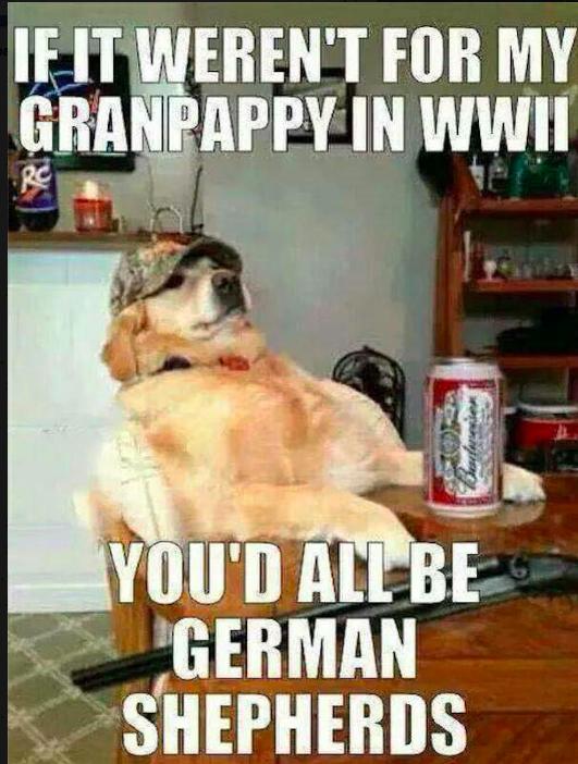 funny memorial day meme