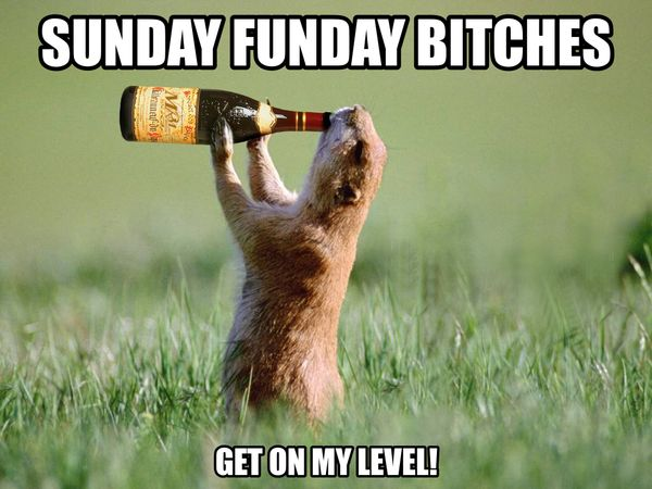 funny sunday meme