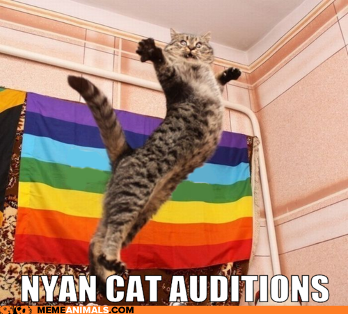 high spirited Nyan Cat memes