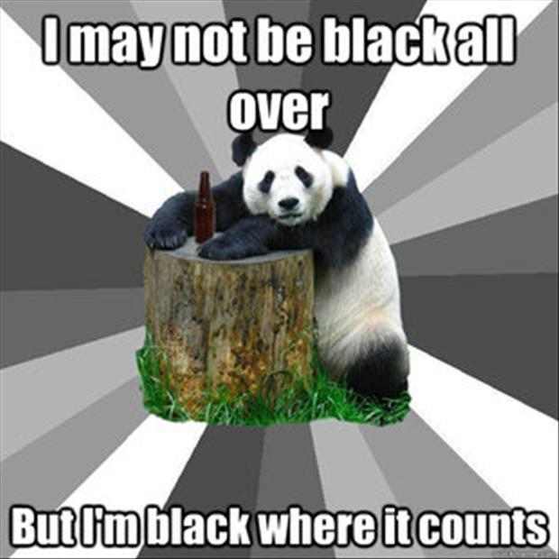high-spirited bear memes