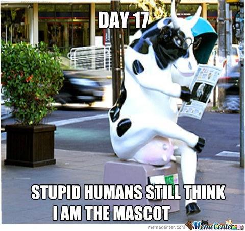 high spirited cow meme