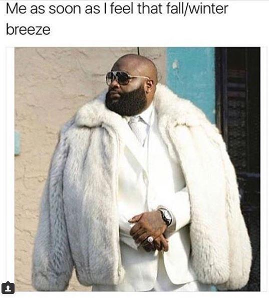 high spirited fall memes