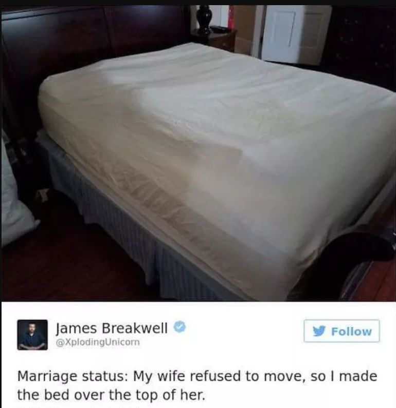 high spirited marriage memes