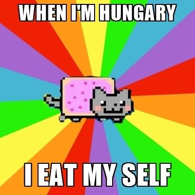 hilarious Nyan Cat memes