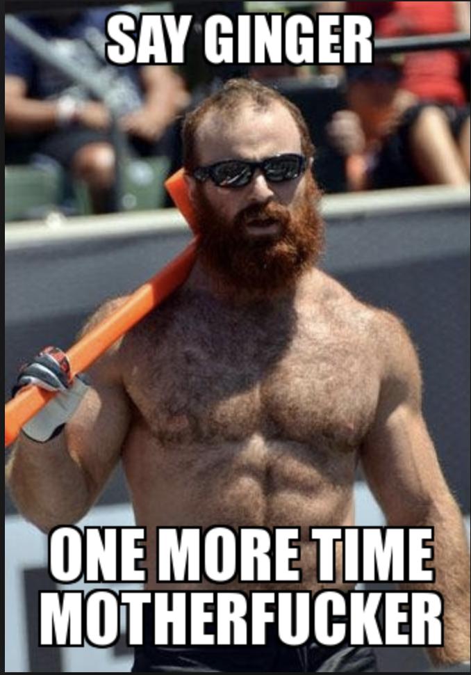 hilarious ginger meme