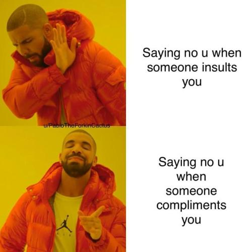 hilarious insult meme
