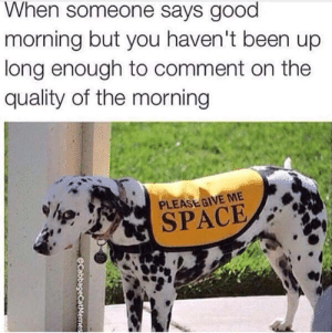 hilarious morning memes