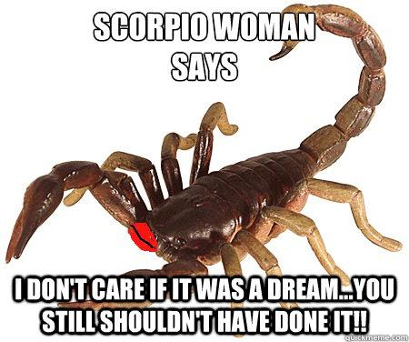 hilarious scorpio memes