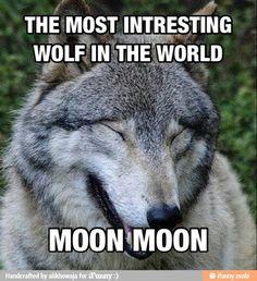 humorous Moon Moon memes