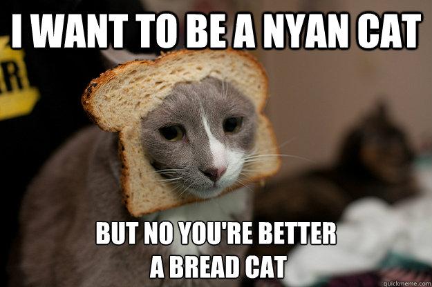humorous Nyan Cat memes
