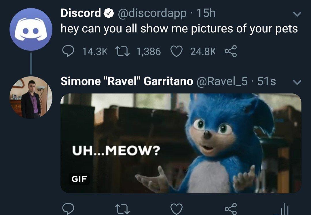 humorous discord memes
