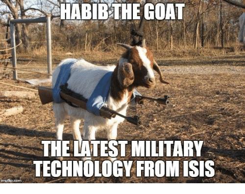 humorous goat meme
