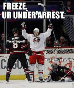 humorous hockey memes