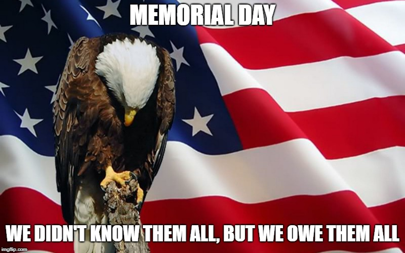 humorous memorial day meme