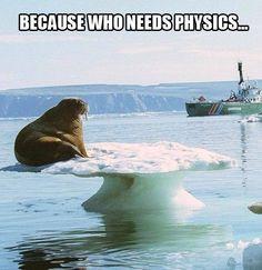 humorous physics memes