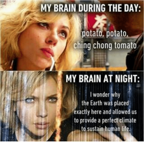 humorous potato meme