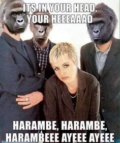 jolly Harambe the Gorilla memes