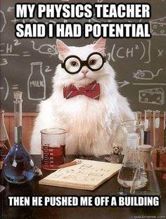 jolly physics memes