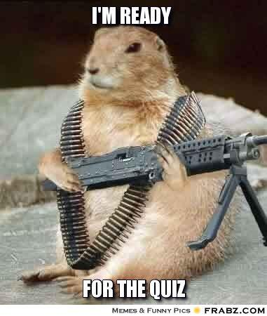 jolly squirrel meme