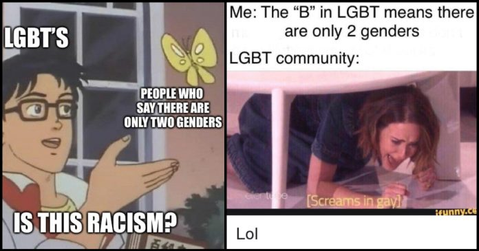 100 Lgbt Memes Are For All Humans Geeks On Coffee