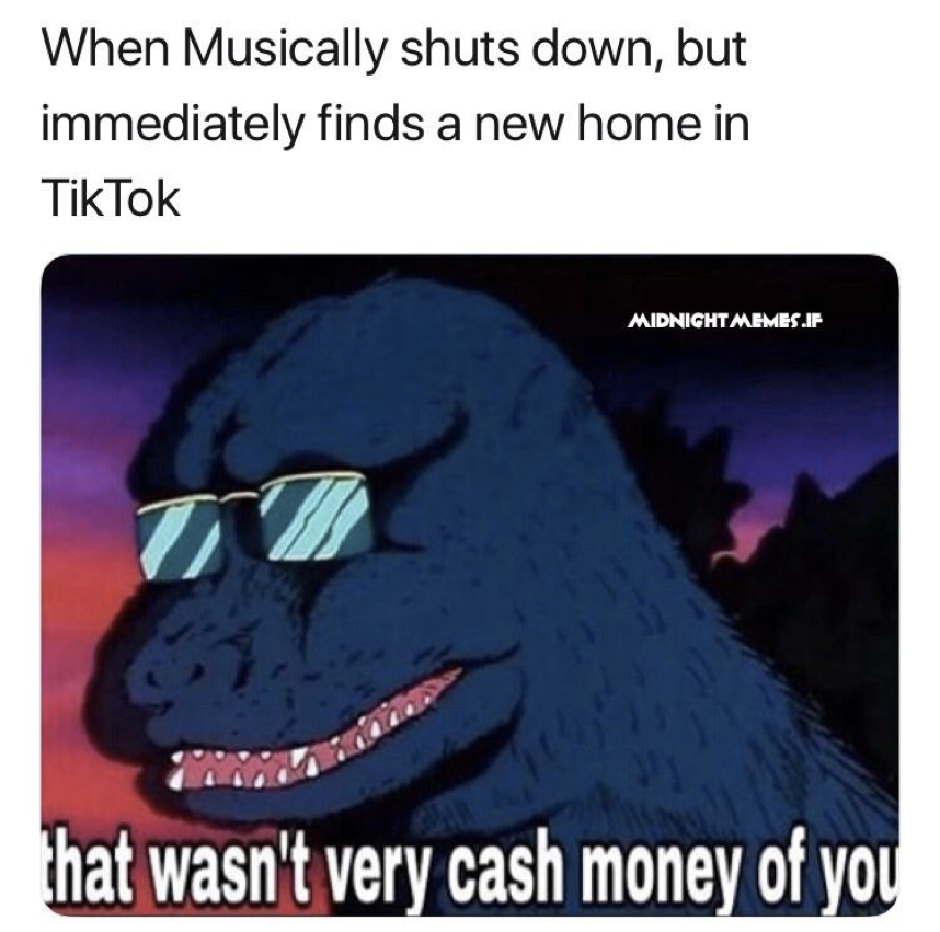 lively Tiktok memes