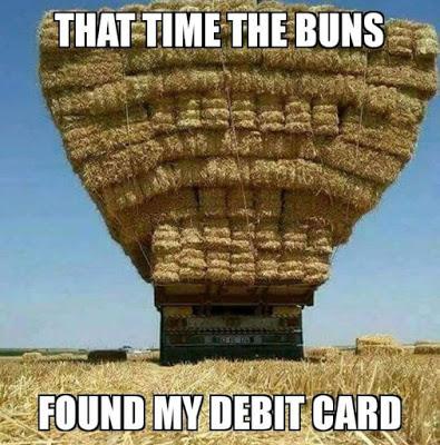 lively bunny memes