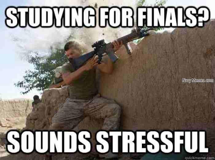 lively finals memes