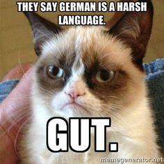 lively german memes