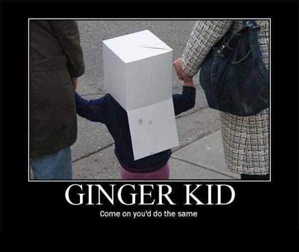 lively ginger meme