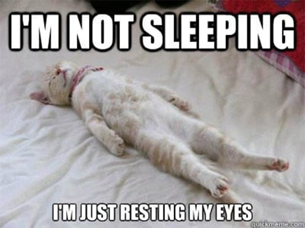lively sleep meme