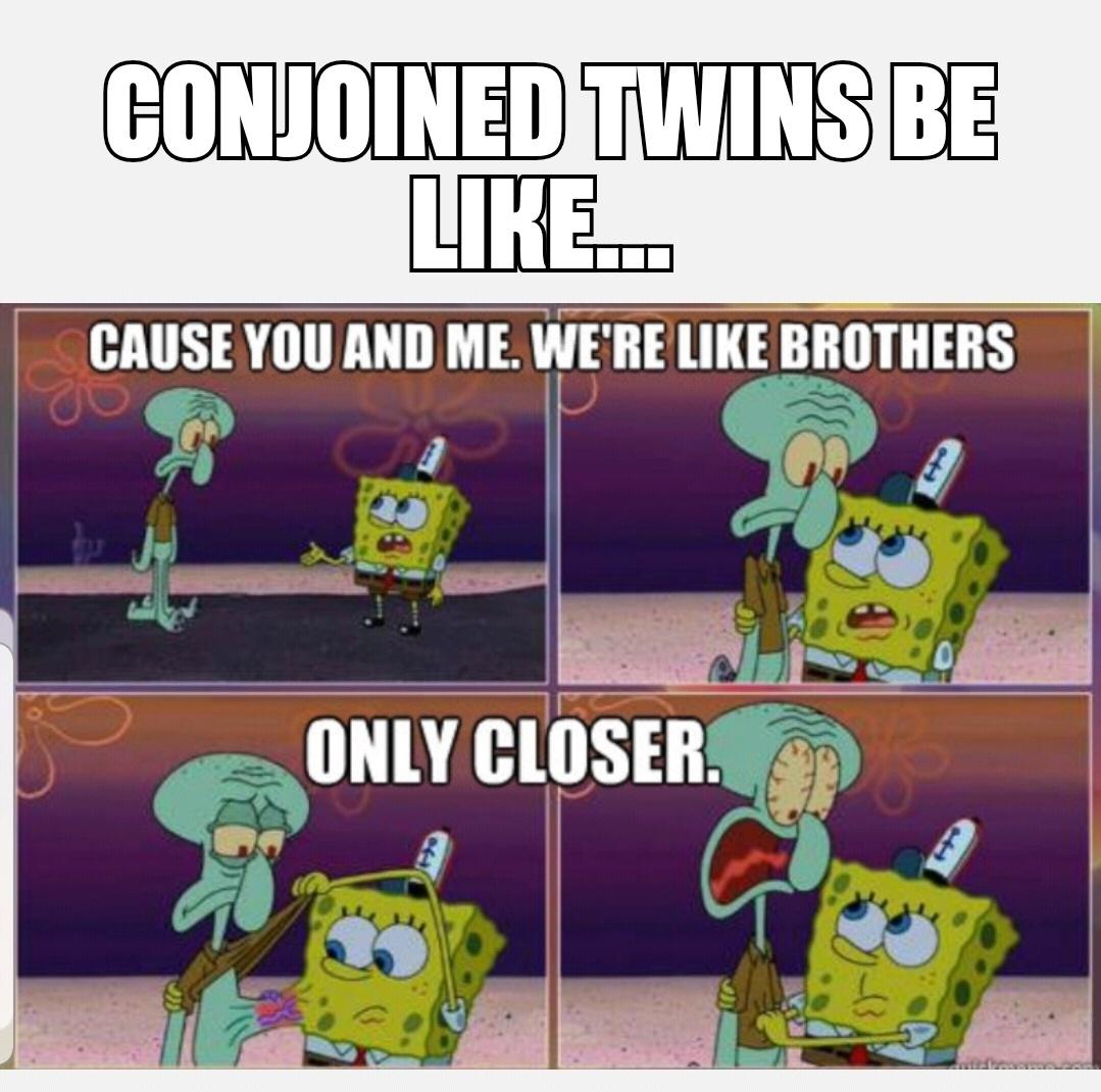 lively squidward meme