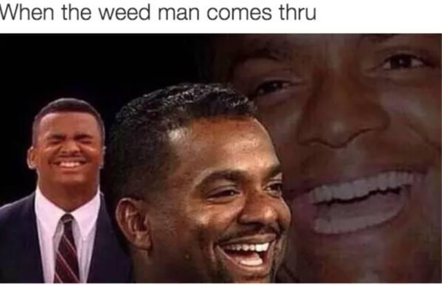 lively stoner memes