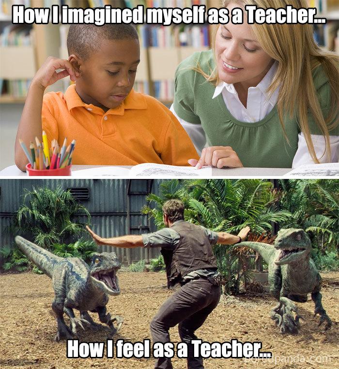 lively teacher memes