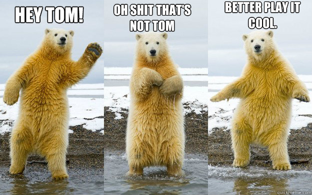 rib-tickling bear memes