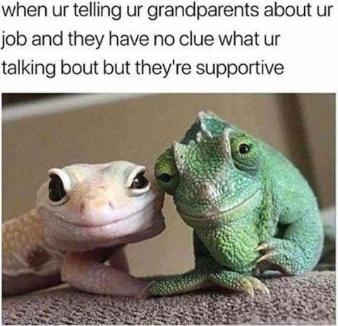 rib-tickling family memes