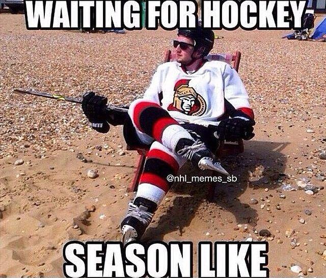 rib-tickling hockey memes