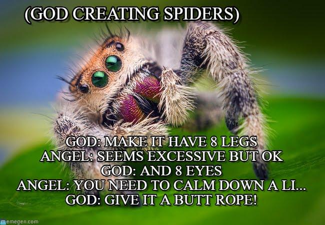 rib tickling spider memes