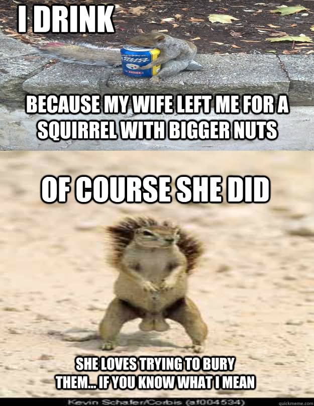 rib-tickling squirrel meme