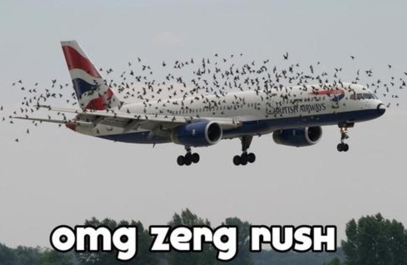 rib-tickling zerg rush meme