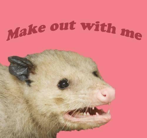 sparkling flirty memes