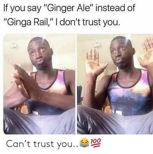 sparkling ginger meme