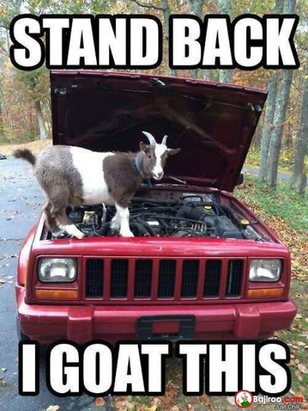 sparkling goat meme