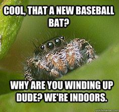 sparkling spider memes